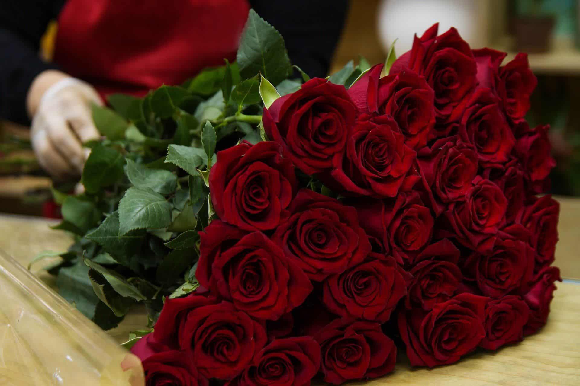 www.mydailyspanish.com Many Flowers