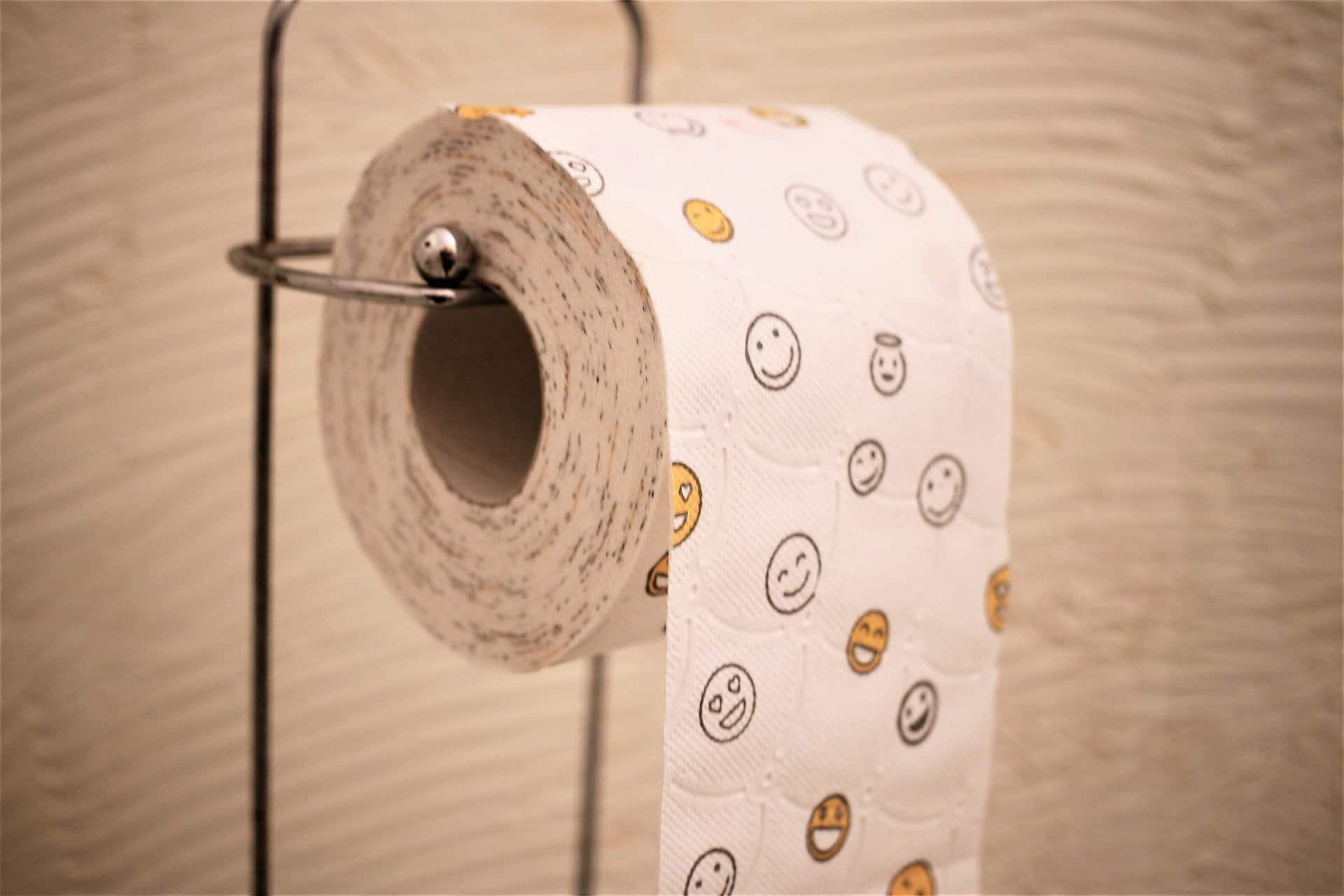 www.mydailyspanish.com Toilet Roll Pipí Caca Mear Cagar